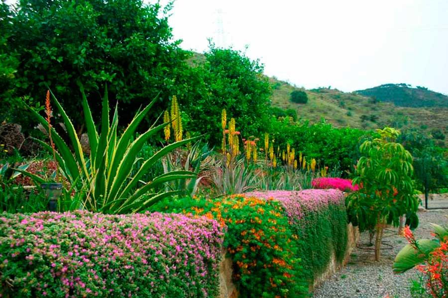 Naturalgreen paisajismo landscaping - Que es paisajismo ...